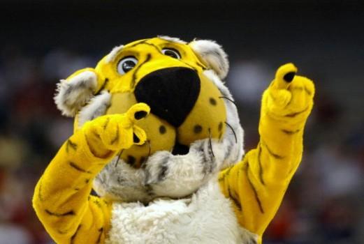 The Missouri Tigers 907f 521x350